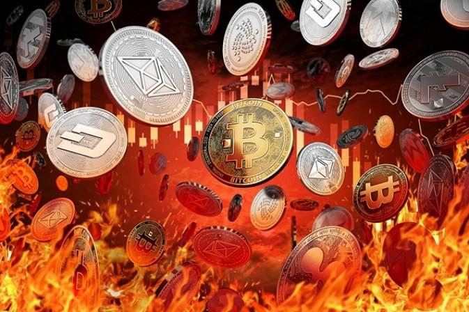 """cơn """"sóng thần"""" của Coin 2017"""