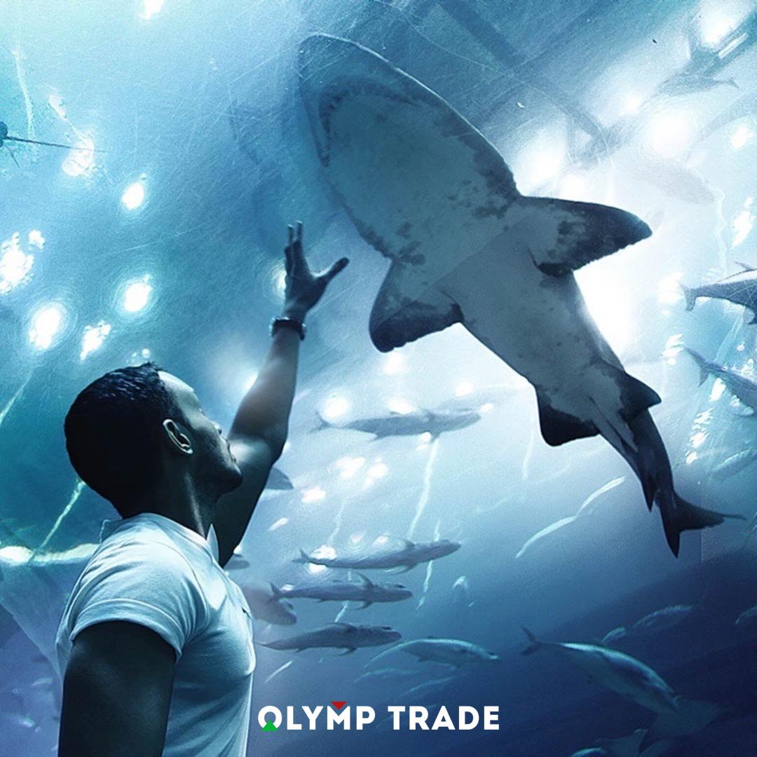 Giới thiệu vào room tín hiệu chơi Olymp Trade
